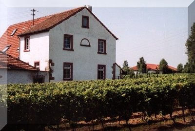 Das Dorf